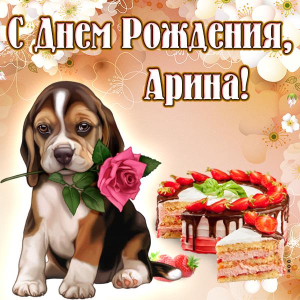 Арину с днем рождения картинки